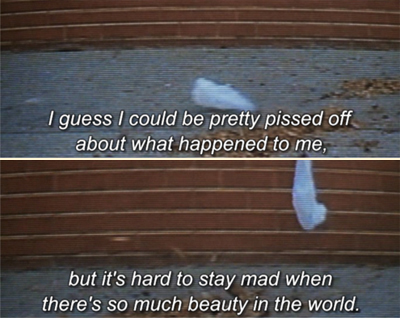 american beauty quotes for essays The film american beauty, directed by sam mendes is a film about imprisonment and escape from imprisonment (mendes, 1999) american beauty explores the breakdown of a suburban family man whose life journeys from self loathing and emptiness to freedom and liberation but at the ultimate cost of his life.